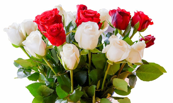 Strauß mit weißen und roten Rosen